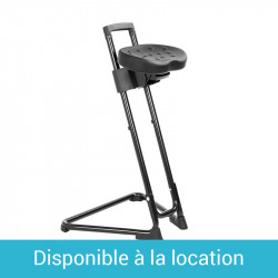 Chaise Lotz
